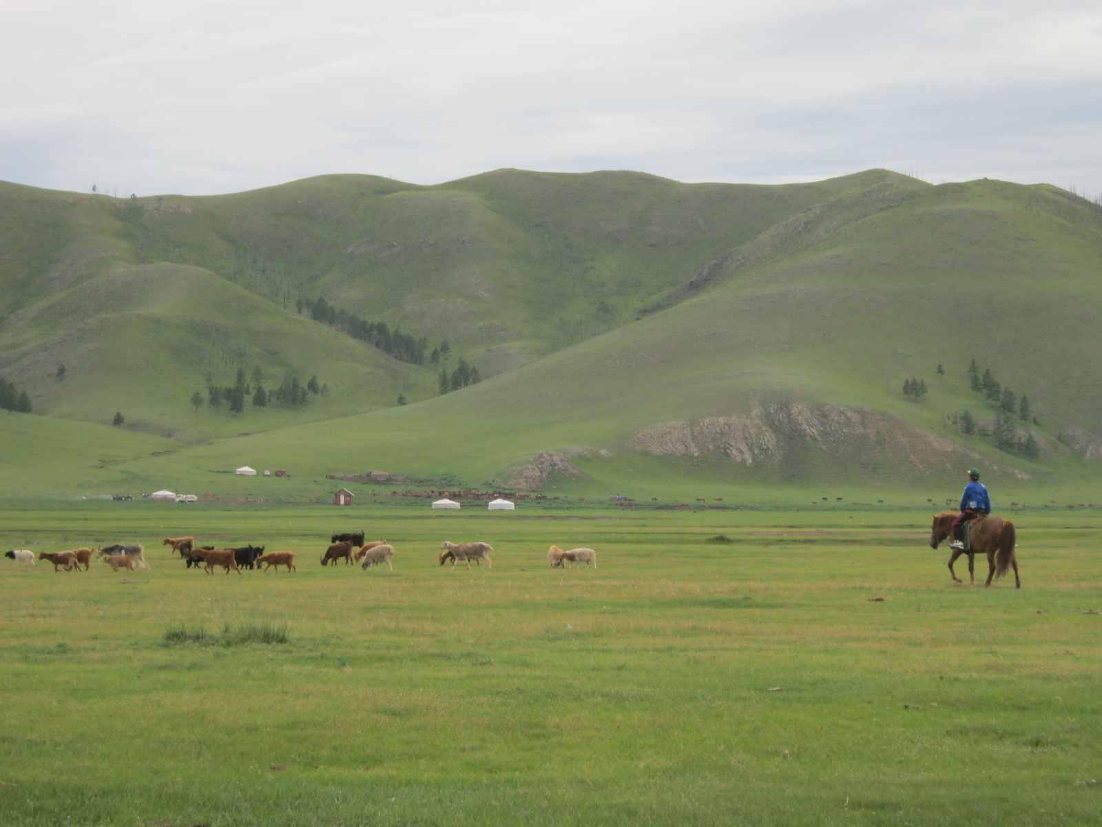 Nomaden sind immer noch häufig zu Pferd unterwegs – trotz der großen Konkurrenz durch die motorisierten Fahrzeuge