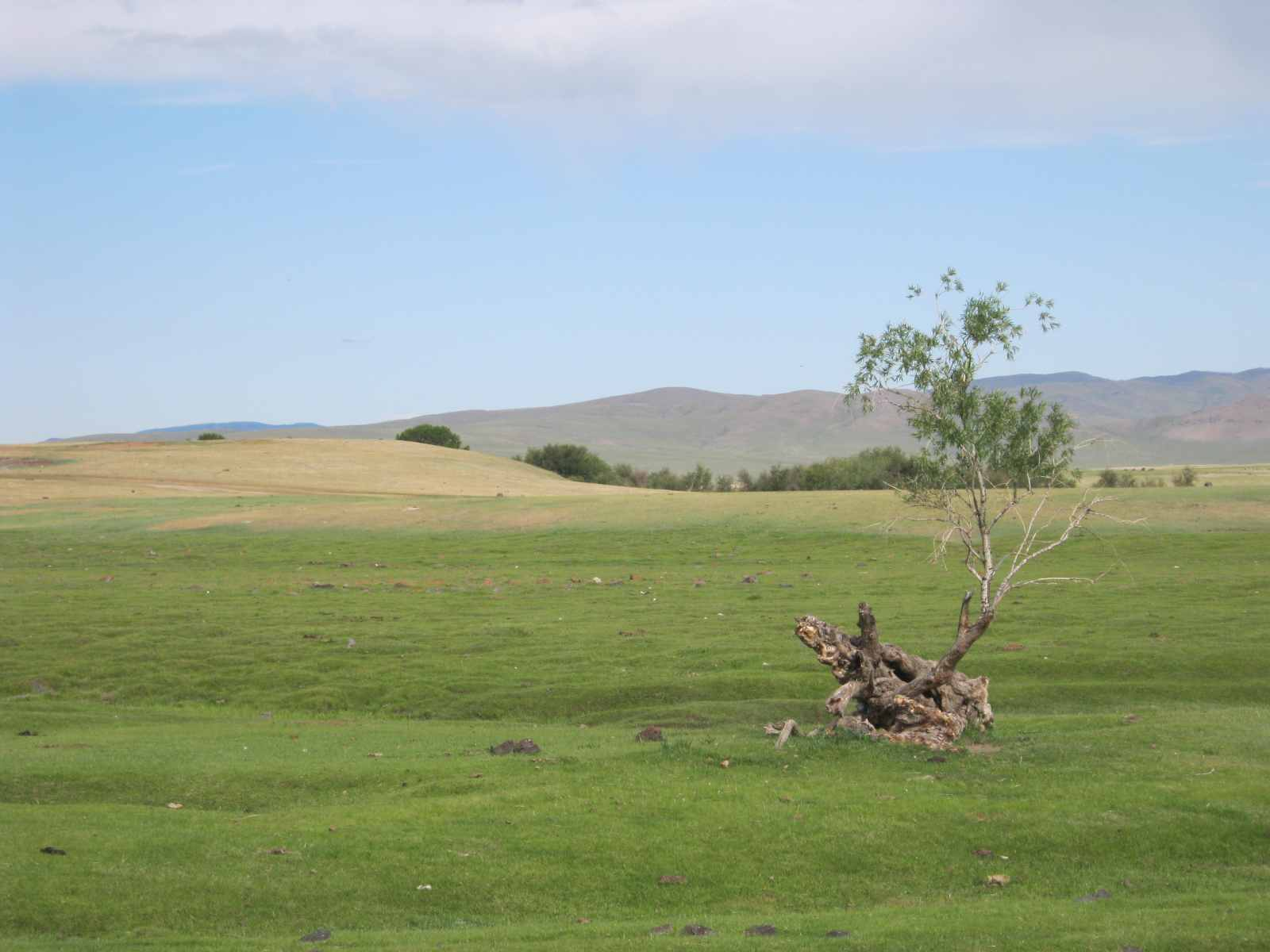 Landschaft im Orkhontal
