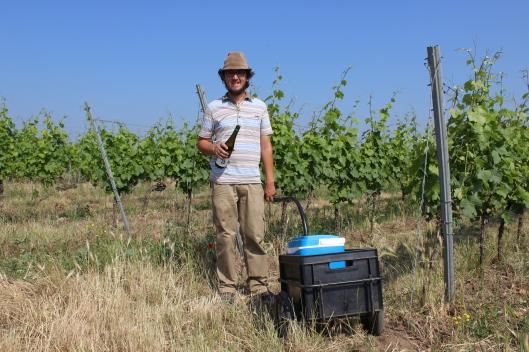 Lukas Krauß: Der Mann mit Hut plus Notration Wein in seinem Wingert.